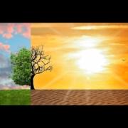 Piano_Bis_le_micro_imprese_ed_il_cambiamento