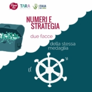Piano_bis-tara_numeri-strategia